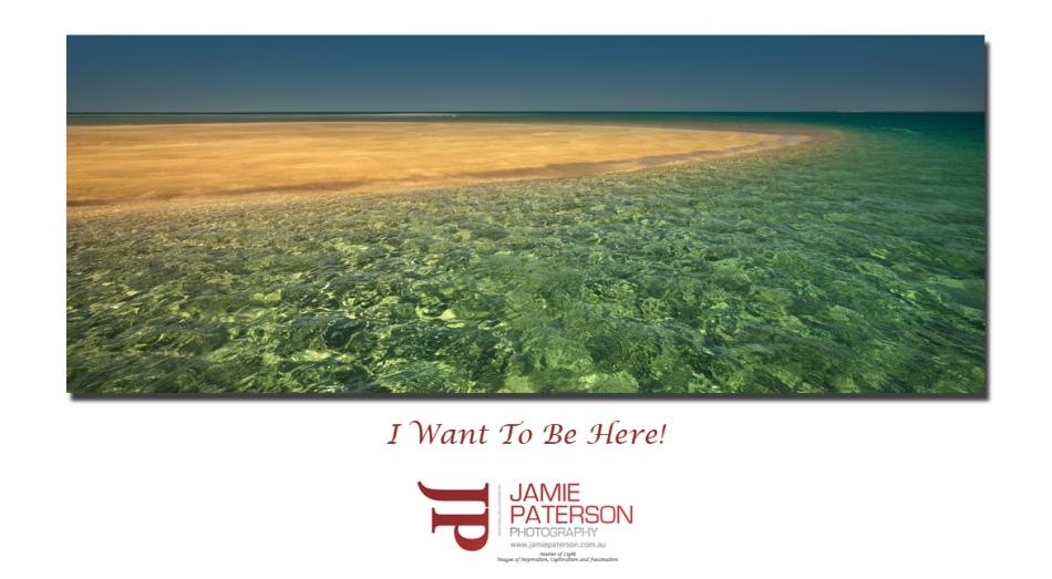 varanus beach water australian landscape seascape